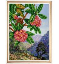 Экзотические цветы № 1